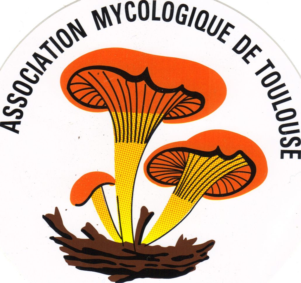 Association Mycologique de Toulouse